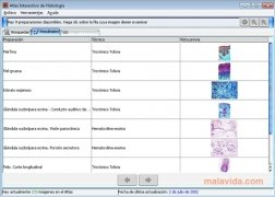 Atlas Interactivo de Histología imagen 3 Thumbnail