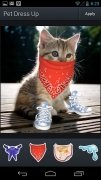 Aviary Stickers: Pet Outfits image 1 Thumbnail