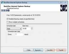 BackRex Internet Explorer Backup bild 4 Thumbnail