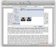 Bean imagen 4 Thumbnail