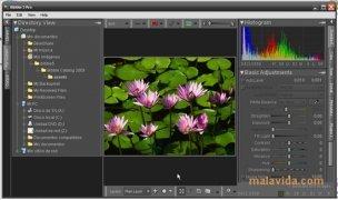 Bibble image 3 Thumbnail