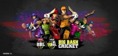 Big Bash Cricket image 2 Thumbnail