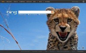Bing  20090601 Español imagen 1