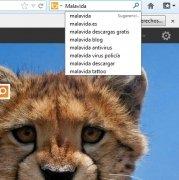 Bing  20090601 Español imagen 2