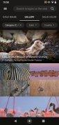 Bing Wallpapers imagen 8 Thumbnail