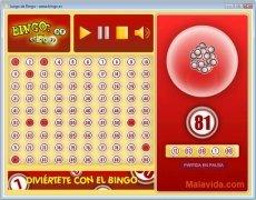 Bingo imagen 2 Thumbnail