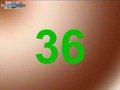 Bingo Caller immagine 5 Thumbnail