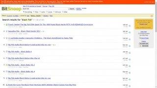 Bitsnoop imagen 3 Thumbnail