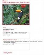 Blingee immagine 4 Thumbnail