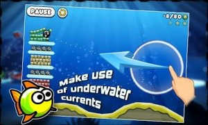 Blosics imagem 2 Thumbnail