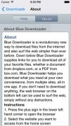 Blue Downloader immagine 2 Thumbnail