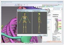 BoneLab imagem 2 Thumbnail