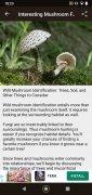 Book of Mushrooms image 7 Thumbnail