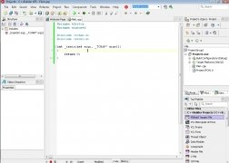 C++Builder imagem 4 Thumbnail