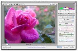 Camera Raw imagen 4 Thumbnail