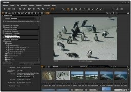 Capture One immagine 2 Thumbnail