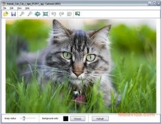 Cartoonist imagem 2 Thumbnail