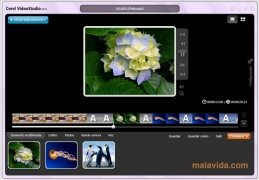 Corel VideoStudio bild 5 Thumbnail