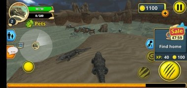 Crocodile Family Sim Online imagen 7 Thumbnail