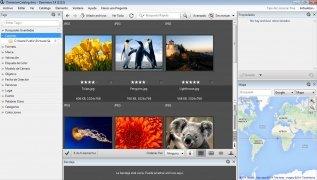 Daminion immagine 2 Thumbnail