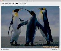 Decompose imagen 2 Thumbnail