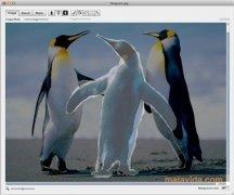 Decompose imagen 3 Thumbnail