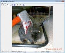 DeformerPro image 1 Thumbnail