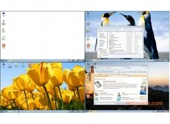 Dexpot imagen 1 Thumbnail