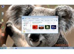 Dexpot imagen 3 Thumbnail