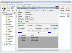 Download Accelerator Manager bild 2 Thumbnail