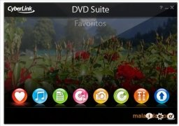 DVD Suite immagine 2 Thumbnail