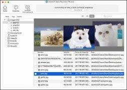 EaseUS Data Recovery Wizard Free imagen 3 Thumbnail