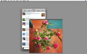 Echofon image 2 Thumbnail