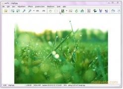 eezPix image 2 Thumbnail