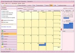 Efficient Lady's Organizer image 2 Thumbnail