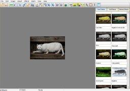 Elfin Photo Editor imagem 1 Thumbnail