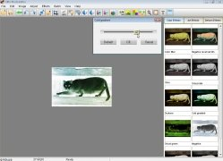 Elfin Photo Editor imagem 2 Thumbnail