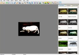 Elfin Photo Editor imagem 3 Thumbnail