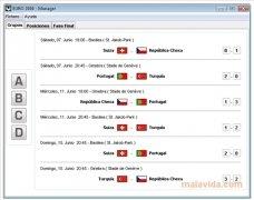 EURO 2008 Manager imagen 3 Thumbnail