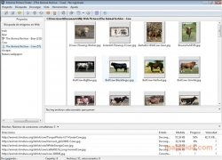 Extreme Picture Finder image 2 Thumbnail