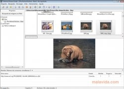 Extreme Picture Finder immagine 5 Thumbnail