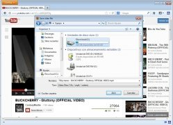 Fast Video Download imagen 2 Thumbnail