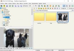 FastStone Image Viewer immagine 1 Thumbnail