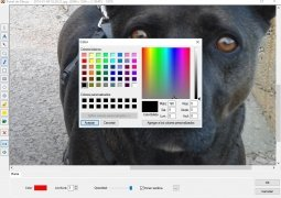FastStone Image Viewer Изображение 6 Thumbnail