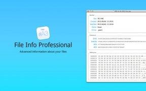 File Info Professional immagine 1 Thumbnail