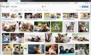 Firefox Изображение 7 Thumbnail