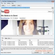 Flash Video Capture image 3 Thumbnail