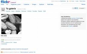 Flickr imagen 1 Thumbnail