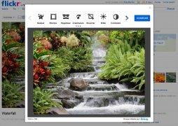 Flickr imagen 4 Thumbnail