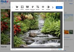 Flickr image 4 Thumbnail